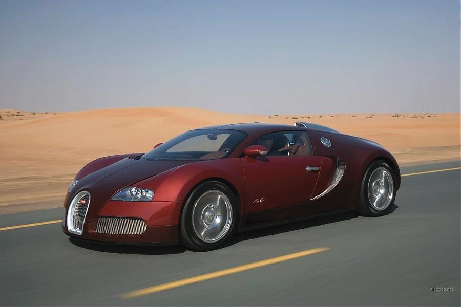 bugatti_veyron_2009_22