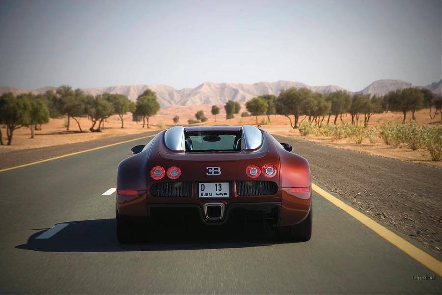 bugatti_veyron_2009_7