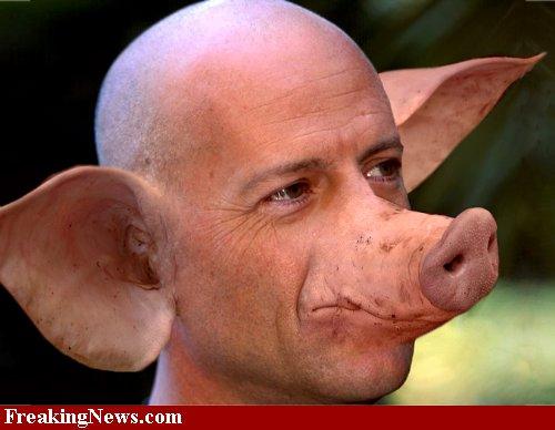 actores-cerdos-08