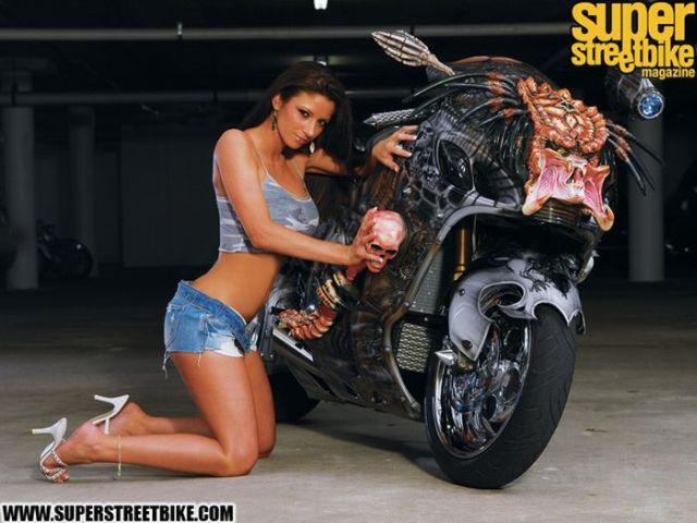 moto-depredador-01
