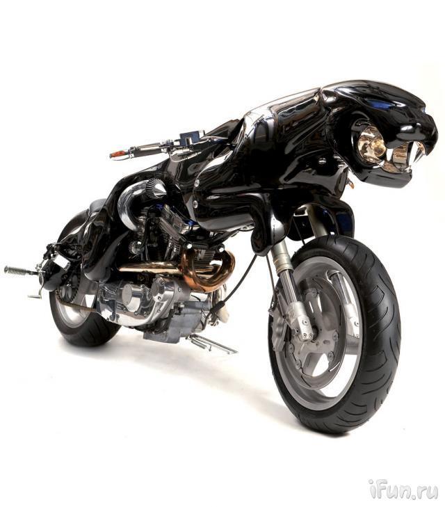 moto-tigre-01