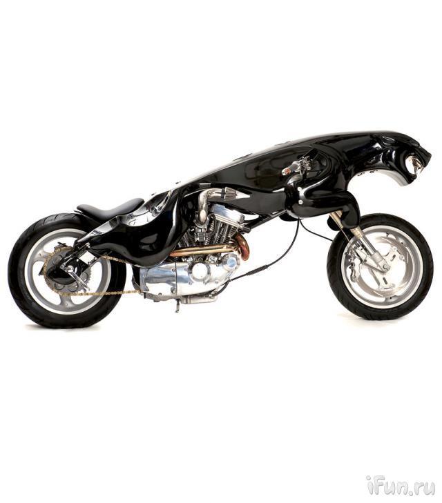 moto-tigre-05